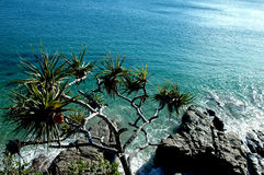 Cliff View Royalty Free Stock Images
