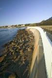 Cliff Walk, Cliffside herrgårdar av Newport Rhode - ö Royaltyfria Bilder