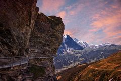 Cliff walk at grindelwald first mountain, bernese oberland sunri royalty free stock image