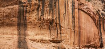 Cliff Wall in Lange Canion op Burr Trail Stock Afbeelding