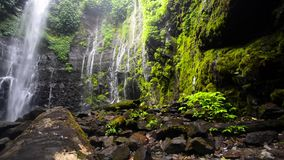 Cliff Waterfall Dolly Shot moisi vert banque de vidéos