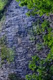 Cliff Waterfall , Eagle Creek, Columbia Gorge, Oregon Stock Photos