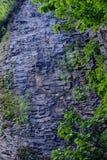 Cliff Waterfall, Eagle Creek, garganta de Columbia, Oregon Fotos de archivo