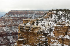 Cliff wooded in the Grand Canyon Royalty Free Stock Image
