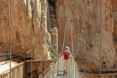 Cliffes de cruzamento por uma ponte de suspensão com calbes foto de stock