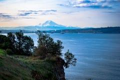 Cliffhangingträd över Elliot Bay arkivfoton