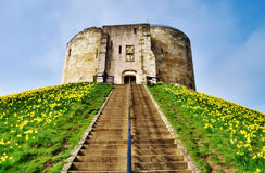 Cliffords Tower Dominating The Motte. View up the steps on the motte to the ruins of the stone medieval Norman keep of York Castle known as Cliffords Tower Royalty Free Stock Photography