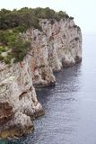 Cliffs. A pine tree at the cliffs of Dugi Otok (Long island) in Croatia Stock Photos