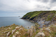 Cliffs above Portloe in Cornwall Stock Photos