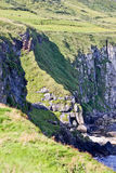 Cliffs along Irish Coast, Northern Ireland Royalty Free Stock Image
