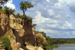 Cliffs along the river Nile in Murchison Falls National Park. The cliffs that African Bee Eaters live in along the river Nile in Murchison Falls National Park royalty free stock photo