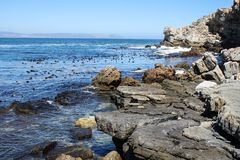 Cliffs along south africas coastline. At the indian ocean royalty free stock photography