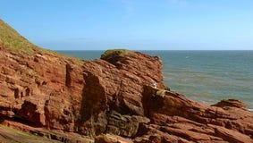 Cliffs Arbroaht. Coastal rock cliffs in Arbroath in Scotland over the North Sea Stock Photos