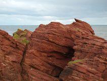 Cliffs of Arbroath. Rocks cliffs on the coast of Arbroath in Scotland Royalty Free Stock Images