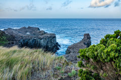 Cliffs in the atlantic ocean, Azores islands, Terceira Royalty Free Stock Photos