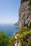 Cliffs and Blue Water of Capri Stock Photos