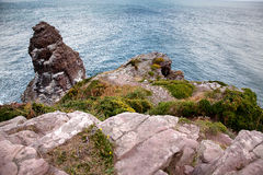 Cliffs at Cap Frehel Royalty Free Stock Photography
