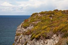 Cliffs at Cap Frehel Royalty Free Stock Photos