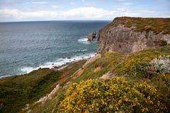 Cliffs at Cap Frehel Stock Image