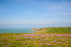 Cliffs at Cap Gris Nez, Cote opale, France Royalty Free Stock Photos