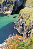 Cliffs at Carrick A Rede in Northern Ireland Stock Image