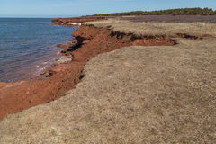 Cliffs at Cavendish Beach PEI Stock Photography