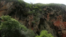 Cliffs with caves and trees stock footage