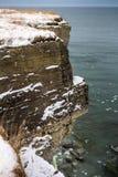 Cliffs. Coastal cliffs near Paldiski city in Estonia Royalty Free Stock Photos