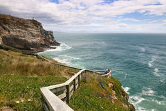 Cliffs on coastline of South Island, New Zealand Royalty Free Stock Images