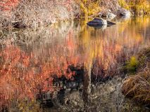 Still water in autumn Stock Photography