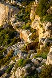 Cliffs at the cost of Malta. Next to the mediterrean sea Royalty Free Stock Image