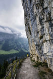 Cliffs covered with trees near Ebenalp, Switzerland Stock Photography