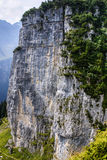 Cliffs covered with trees near Ebenalp, Switzerland Royalty Free Stock Images