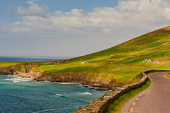 Cliffs on  Dingle Peninsula, Ireland Royalty Free Stock Photo