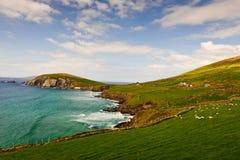Cliffs on Dingle Peninsula, Ireland. Scenic landscape by sea on Dingle Peninsula in Ireland royalty free stock photography