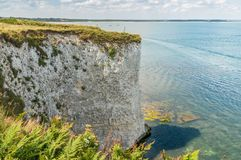 Cliffs in Dorset Stock Photography