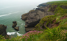 Cliffs at Dunmore East Royalty Free Stock Image