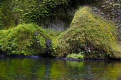 Cliffs, Eagle Creek, Columbia River Gorge Royalty Free Stock Photos