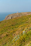 Cliffs with flowers and old tower at the Cape of Frehel. Brittany. Royalty Free Stock Photography