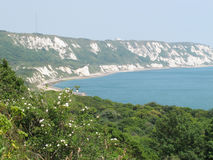 The Cliffs at Folkestone Stock Photography