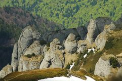 Cliffs and forest in Ciucas mountains Stock Image
