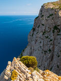 Cliffs of the Formentor, Mallorca. Cliffs photographed from view point next to the road leading to the Cape Formentor lighthouse located it the north coast of Stock Photos