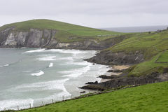 Cliffs in Ireland Royalty Free Stock Image