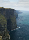 Cliffs of Ireland in vertical position Stock Images