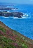 Cliffs in Ireland Stock Photo