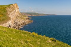 Worbarrow Bay, Jurassic Coast, Dorset, UK. Cliffs at the Jurassic Coast, seen on South West Coast Path between Worbarrow Bay and Brandy Bay, Dorset, UK Royalty Free Stock Photography