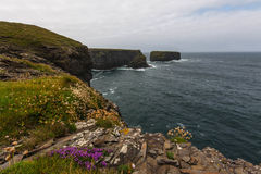 Cliffs of Kilkee. Famous Cliffs of Kilkee in County Clare Royalty Free Stock Photo