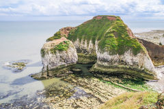 Cliffs at low tide at Flamborough Head Royalty Free Stock Photography