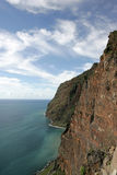 Cliffs of Madeira Royalty Free Stock Images