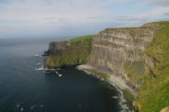 Cliffs of Moher. The Cliffs of Moher in Ireland Royalty Free Stock Photography